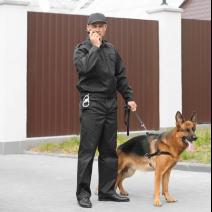 Servicio de Vigilancia con Perros - 10 horas